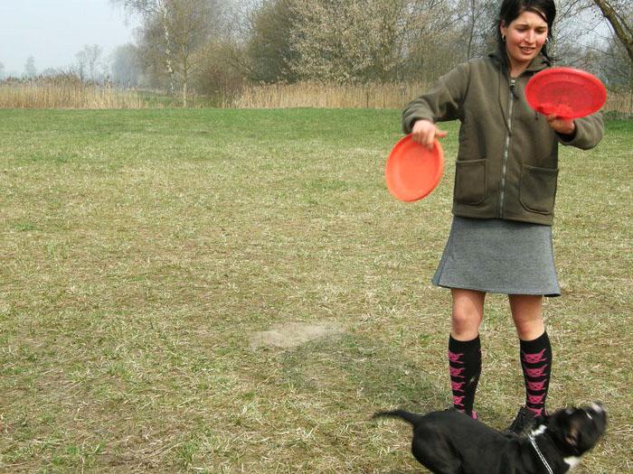 Seminář dogfrisbee s Míšou Androvou