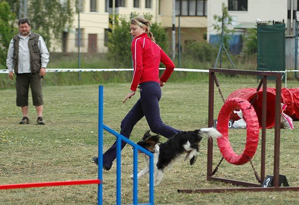 Závody agility v Lysé nad Labem, 10.5.2008