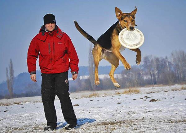 Dogfrisbee seminář s Michalem Romanem